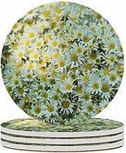 Set von 4 Untersetzer, Gänseblümchen, Blumen,