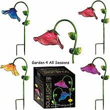 Set von vier–blau, rosa, lila & gelb–Creekwood (Regal Art & Geschenk) Solar Licht Garten Einsatz in Geschenkverpackung–Große Bell Flower