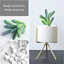 SFXYJ Mini Dekorative künstliche Pflanzen -
