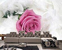 ShAH Feder Rose Hd Wallpaper Wohnzimmer