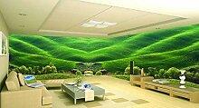 ShAH Grüne frische Gras Tapete der Tapete 3D für
