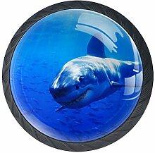 Shark Unterwasser Schrank Kommode Schublade