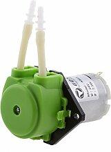 Sharplace 24V Peristaltische Flüssige Mini -Dosierschlauchpumpe für Aquarium Labor - Grün