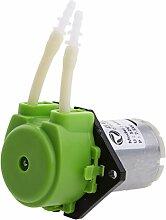 Sharplace DC 12V Kleine Pumpe Dosierung Schlauchpumpe mit Dosierkopf für Aquarium , Flüssigkeiten - Grün