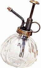 Sharplace Zerstäuber Gießkanne/Wasserkanne/Blumengießer Bewässerung aus Glas - Klar, 250ml