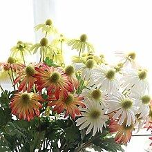 shenchi asiatischen Chrysanthemum Regenschirm Chrysanthemum Hochzeit Simulation Blume Pflanze 5Ast blau