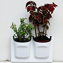 shengmo Selbstwässernder Vertikal Übertopf & #-; Wand montiert Blumentopf & #-; Aufhängen Blumentöpfe, Living Wand Pflanzen Halter w/2-pockets und 2pc Filter Schicht & #-, die perfekt für Indoor & Outdoor Dekoration & #-; Landschaft Engineering oder Wachsende Pflanzen