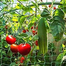 Shengruili Pflanzennetz,Pflanzennetz