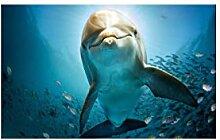 SHENLANYU Leinwanddrucke Animal Big Dolphin
