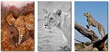 SHENLANYU Leinwanddrucke Wilde Tierflecken und
