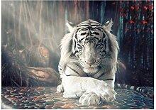 SHENLANYU Moderne Tierplakate Weißer Tiger