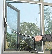 Fliegengitter Bodentiefe Fenster : insektenschutz f r bodentiefe fenster g nstig online ~ Watch28wear.com Haus und Dekorationen