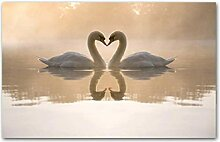 SHKHJBH Leinwanddruck Love Swan Bird Animal