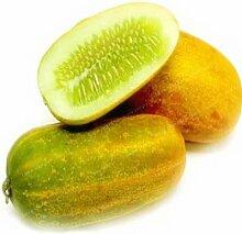 Shopvise Gurke Fruchtsamen 20Pcs / Beutel; Color 2