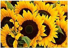 SHPXMBH Leinwand Bilder Sonnenblume Blume Poster
