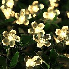 Shuxinmd Pfirsich Blüten Solar Lichterkette