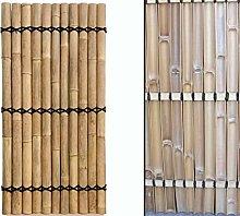 Sichtschutz Bambus Zaun Apas gelblich, starre