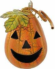 SIDCO Halloween Kürbis Windlicht Pumpkin