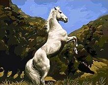 SiJOO Digitaler Fotorahmen des weißen Pferdes