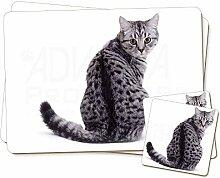 Silber Spot- Tabby-Katze Zwillings Platzdeckchen