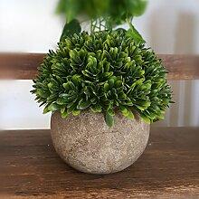Simulation Der Pflanze Blumen Topfpflanzen Wohnzimmer - Möbel Inneneinrichtungsgegenstände Plastik Blume Fleischigen Kleinen Bonsai,Gelb