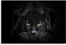 Sinus Art Fotoleinwand 60x40cm Tierfotografie –