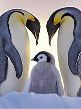 SKSK 5D Diamant Malerei Pinguin voller Diamant