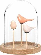 Skulptur 3 bunte Vögel unter Glasglocke H18