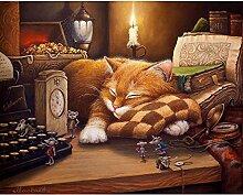 Sleepy Cat DIY Ölgemälde von Zahlen Acryl
