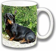 Sleepy Schwarz Hellbraun Braun Dackel Fotodruck Close-up Keramik Tee-/ Kaffeetasse Einzigartige Geschenkidee
