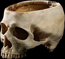 Keramik-Graskopf Skull 6 cm Totenkopf Totenschädel Blumentopf Pflanzentopf Gras