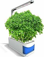 Smart Garden,Intelligente