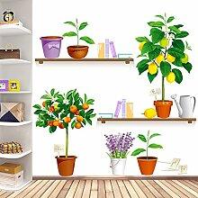 SMNCNL Entfernen der Wand - Blume pflanzen