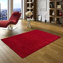 Snapstyle Hochflor Langflor Teppich Cottage Rot in