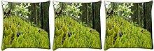 Snoogg reinigen Garten 3Stück Digital Kissenbezug, bedruckt Kissen 40,6x 40,6cm