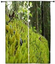 Snoogg reinigen Garten Polyester Drapes Verdunklungsvorhänge 76,2cm W x 152,4cm L (Set von 2)