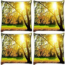Snoogg Sunrise in Garten 4Stück Digital Kissenbezug, bedruckt Kissen 35,6x 35,6cm