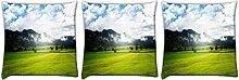 Snoogg Wolken und Garten 3Stück Digital Kissenbezug, bedruckt Kissen 35,6x 35,6cm