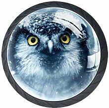 Snow Eagle Möbelknäufe aus ABS-Glas, rund, für