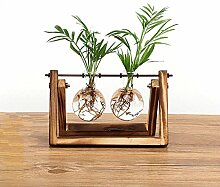 SODIAL Kreative Blumenzwiebel Vase Pflanze Glas