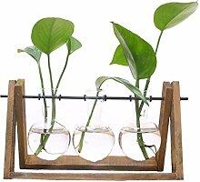 SODIAL Pflanzen Terrarium mit Holzstaender