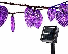 Solar LED Herz Lichterkette,DINOWIN 20ft 30 LED
