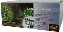 Solar-Lichterkette 100