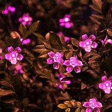 Solar Lichterkette Pfirsichblüten,SUAVER