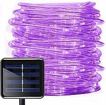 Solar Lichtschlauch Außen, DINOWIN 39 ft/12M 100