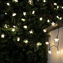 solarbetriebene Outdoor Stern Lichterkette, 10m,