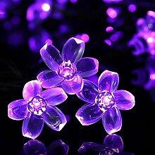 Solarlampen Blumen Schnur Lichter Außen,KINGCOO