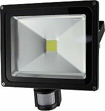 Solight WM-30WS-E A+, LED-Außenleuchte, Bewegungssensor, 30W, 2400lm, Lichttemperatur 6000K, AC 230V, schwarz, Aluminium, 30 watts, Black, 12 x 22.3 x 23.5 cm