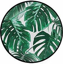 Sommer grüne Palme Monstera verlässt tropischen