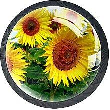 Sonnenblumen Blumen Pflanzen, Schubladenknöpfe